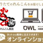 武井れんこんオンラインショップ